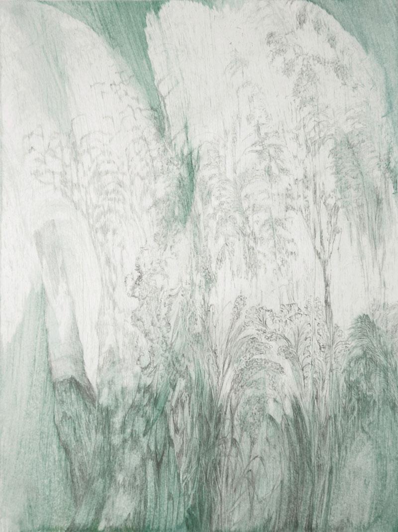 17_2_15-oel-Grafit-a.-Papier-28x21cm